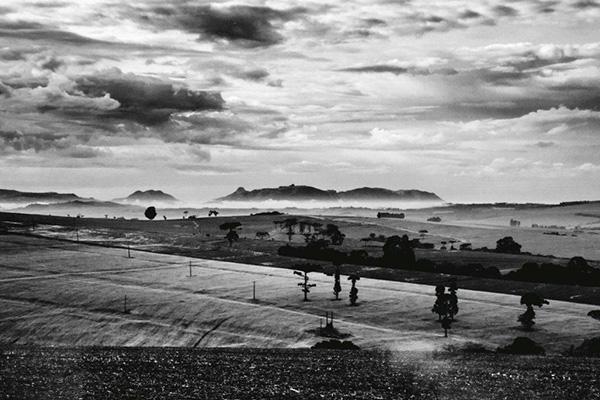 Amanhecer no Campo por Nelson A. Nishikawa