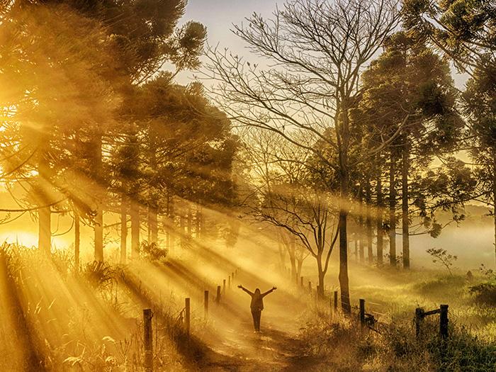 Raios de Luz no amanhecer por Flavio B. Conceição