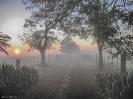 Amanhecer Rural